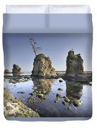 Pig And Sows Inlet In Garibaldi Oregon At Low Tide Duvet Cover
