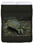 Pig-nosed Turtle Duvet Cover