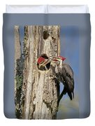 Pileated Woodpecker And Chick Duvet Cover