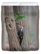 Pileated Woodpecker Foraging Duvet Cover
