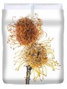 Pincushion Protea Duvet Cover