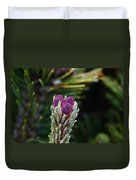 Pine Cone Buds Duvet Cover