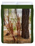 Pine Drops And Ponderosa Pine In Des Chutes Nf-or  Duvet Cover