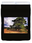 Pine Tree In Hoge Veluwe National Park 1. Netherlands Duvet Cover