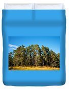 Pine Trees Of Valaam Island Duvet Cover