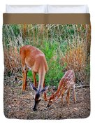 Piney Mountain Doe And Fawn Duvet Cover