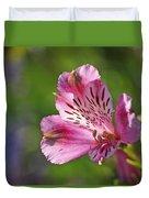 Pink Alstroemeria Flower Duvet Cover