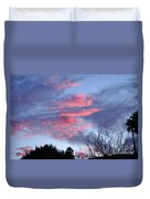 Pink And Blue Duvet Cover
