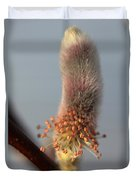 Pink And Grey Pussy Willow In Bloom Duvet Cover