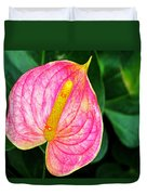 Pink Anthurium Duvet Cover