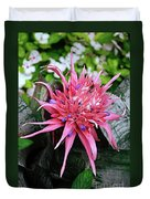 Pink Bromeliad Duvet Cover