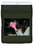 Pink Bromeliad Bloom Duvet Cover by Kaye Menner