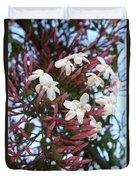 Pink Buds And Jasmine Blossom Close Up Duvet Cover