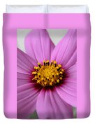 Pink Coreopsis Duvet Cover