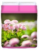 Bellis Perennis Pomponette Called Daisy Blooming  Duvet Cover