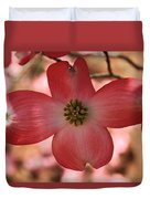 Crown Of Thorns Pink Dogwood At Easter 8 Duvet Cover