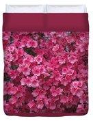 Pink Full Frame Azalea Blossoms Duvet Cover