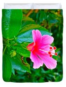 Pink Hibiscus Near Celadon Factory In Chiang Mai-thailand Duvet Cover