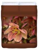 Pink Lenten Rose Duvet Cover