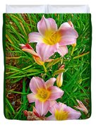 Pink Lilies Near Ottawa-on Duvet Cover