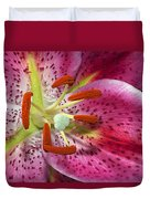 Pink Lily Up Close Duvet Cover