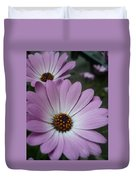 Pink Osteospermum Duvet Cover