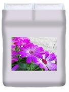 Pink Perciallis Ragwort Flower Art Prints Duvet Cover