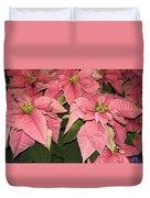 Pink Poinsettias Close-up Duvet Cover