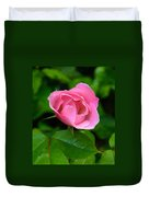 Pink Rose Volunteer Duvet Cover