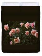 Flowers - Pink Roses Duvet Cover