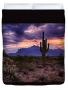 Pink Skies At The Superstitions Duvet Cover