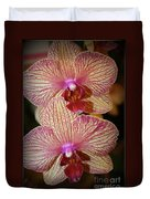 Pink Striped Orchids Duvet Cover