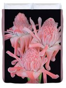 Pink Torch Ginger Trio On Black - No 2 Duvet Cover
