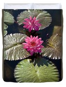 Pink Water Lily IIi Duvet Cover