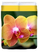 Pink Yellow Orchid Duvet Cover by Rona Black