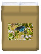 Pipevine Swallowtail On Asters Duvet Cover