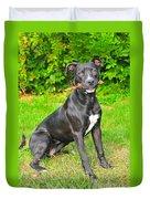 Pit Bull Terrier II Duvet Cover