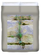 Plants In The Brick Wall Duvet Cover