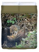 Play Time Photo A Duvet Cover