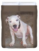 Playful Pitbull Puppy Haaweo Duvet Cover