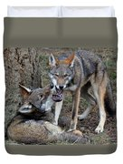 Playful Wolves Duvet Cover