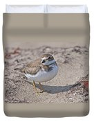 Plover Lover.. Duvet Cover