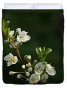 Plum Blossoms Duvet Cover