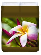 Plumeria 2 Duvet Cover