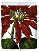 Poinsettia A Traditional Christmas Plant Vintage Poster Duvet Cover