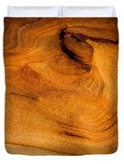 Point Lobos Abstract 10 Duvet Cover