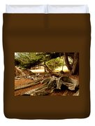 Point Lobos Whalers Cove Whale Bones Duvet Cover by Barbara Snyder