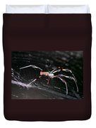Points Of Contact - Spider - Orb Weaver Duvet Cover