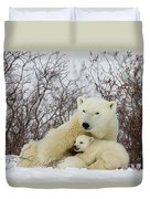 Polar Bear And 3 Month Old Cubs Duvet Cover