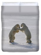 Polar Bear Pair Sparring Churchill Duvet Cover